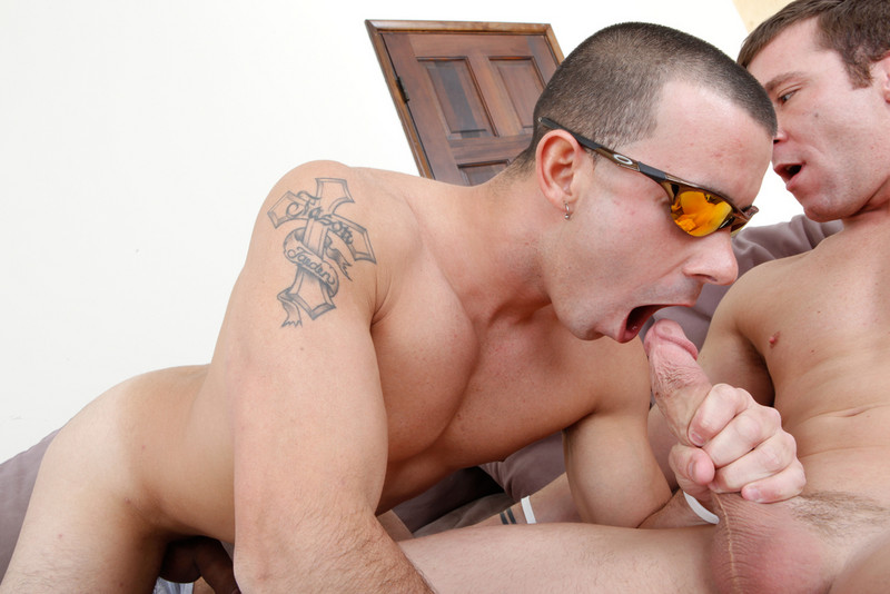 Nikko alexander pornstar